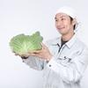 「投資とは何か」を勉強するには、家庭菜園をやってみると良いかも