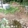 カメを飼う池を自作してみる!2号池造成