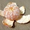 手で皮がむけるオレンジ