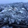 初雪!カザフスタンに冬がやってきたよ