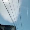 小田原の「ういろう」に行ってきました。