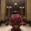 今週のお題「運動不足」 先日、東京丸の内へ。17404歩。帝国ホテルにてランチ。