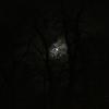 月影がクッキリ‥霜月の望月 ~Lunar shadow is clear on Frost Moon