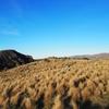 クライストチャーチ・ゴンドラで標高400mの小高い丘から街を一望。余裕がある人は徒歩で下山可。【2016年6月NewZealand旅行記その8】