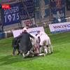 Bチーム: ムレのゴールでコモに追いつき、1-1 の引き分けで勝点1を獲得