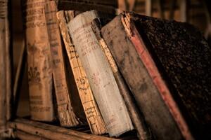 辞書――つねに励ましてくれる存在【通訳者・翻訳者の本棚から】