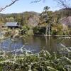 【京都】『龍安寺』に行ってきました。京都観光 京都旅行 女子旅 京の冬の旅 主婦ブログ