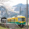 桜と地鉄:横江駅