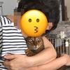 【猫さんと暮らす】猫にも変顔がある