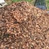 【家庭菜園】実は未熟堆肥は良品質だった!?