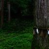 【Living Photo】福井県勝山市平泉寺 x SIGMA fp - 2020.06.26