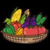 【家庭菜園】夏野菜植えました!