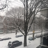 モントリオールはすごい雪・・・らしい。