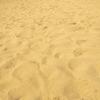【一日一枚写真】鳥取砂丘 Part.11【一眼レフ】