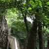 エラワンの滝(Erawan Waterfall)の巻