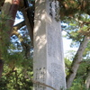 倉橋島村の村長
