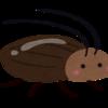 〇億匹のゴキブリが大量の生ごみを処理してくれる!?中国で実際にあるゴミ処理方法とは!?