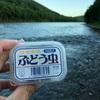 ニジマス大漁(^^)
