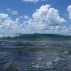 空き瓶はdead marin=死んだ海???オーストラリアスラング