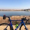 今週末のライド 江戸川右岸宝珠花橋まで往復106km