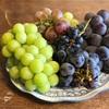 ワイン産地で選ぶオーストラリア