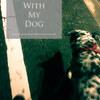 足腰の弱った老犬の散歩時間と運動不足解消