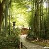 修禅寺と竹林の小径 修善寺観光