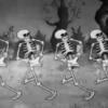 『シリー・シンフォニー』(2)新たな出発点『骸骨の踊り』