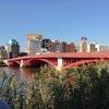隅田川を歩く その3 新大橋から