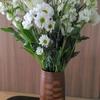 白い花の方がいいと思える間は