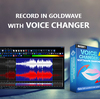 Record in Goldwave with Voice Changer Software