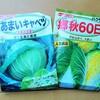 キャベツ&白菜の種まき!