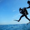 【神子元ダイビング】黒潮パラダイスがやってきた!高難易度の神子元ダイビング楽しむためのヒント