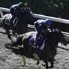 ローズステークス(GII) シンハライト半馬身先着、素軽くしなやか 「競馬レース結果ハイライト」2016年≪競馬場の達人,競馬予想≫