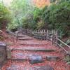 円山公園へ紅葉を見に行く(京都)…過去20161201