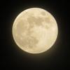 「ストロベリームーン」(6月の満月)を見られて、ラッキー!!(^^)!
