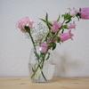 【花を活ける】#2 ピンクの「カンパニュラ・メディウム」