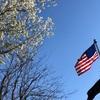 もっと国旗を掲揚しよう(飾ろう)! 日の丸、日章旗です。