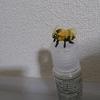面倒臭がりクオリティの蜂を製作しました(>_<)