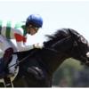 【キンカメ産駒・サクセッションの評価急上昇中】なんと7〜8割くらいの出来で快勝!【2019年6月16日(日)新馬戦回顧】
