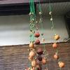 ねらわれた干し柿 ~Deserted Persimmon