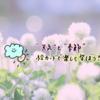 【無料DL】フラッシュカード(絵カード)で英語を覚えよう!~Weather&Seasons(天気と季節)編~
