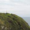高知県西南の旅(4)岬から白山洞門へ(土佐清水市)