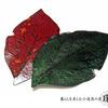 【津軽塗・木村正人】夏の緑の葉っぱのお皿