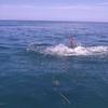 目の前で起こった水難事故~海水浴遍~