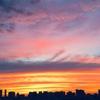 真っ赤な夕焼けだった日の話