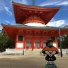 はじめての「高野山」~仏教の聖地をぶらり散策の旅 <和歌山県・高野町>