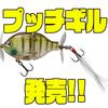 【ティムコ】ペラが付いたギル型ルアー「プッチギル」発売!
