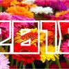 【2018年】「ガーベラ出荷量」ランキング