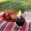 皇居前広場で春のピクニック@皇居外苑